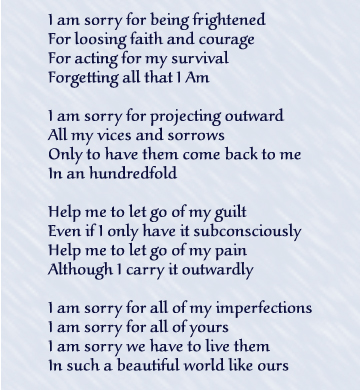 Sorry being poems about Sorry Poems